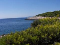 100_4283 (RUDY75) Tags: croazia hvar 20011