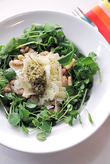 Pecorino Cheese, Green Pesto and Cannellini Beans