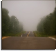 Foggy Road Home (flowerwine) Tags: road street trees mist fog rural country evergreens blacktop lanes 18200mm canon7d