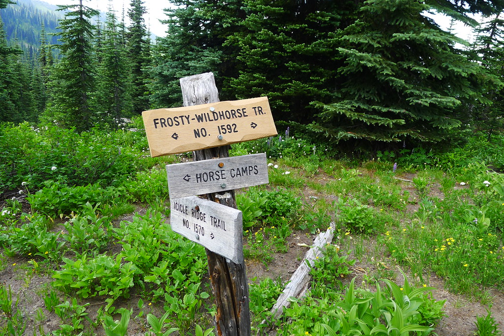 Frosty Pass