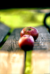 an apple a day   (Hausstaubmilbe) Tags: red apple fruit garden bench smells canoneos7d canonef100mmf28lmacroisusm2