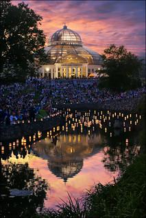 japanese lantern festival - como park zoo st. paul, mn