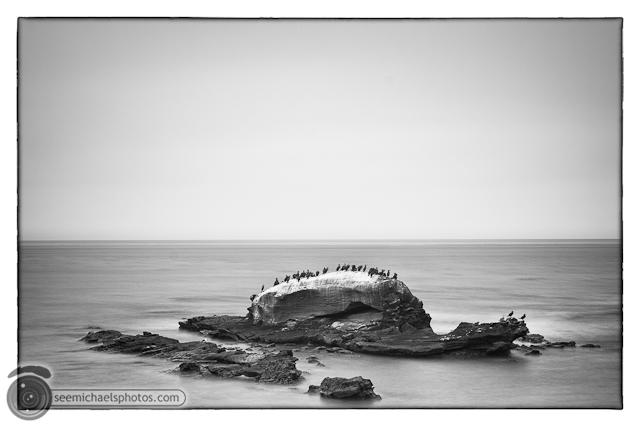 Bird Rock 82311 © Michael Klayman-008