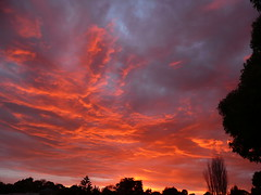 sunrise sky (teressa92) Tags: morning sky nature colors beauty clouds sunrise thebestshot platinumpeaceaward ringexcellence