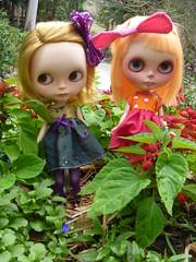 Rudi & Snoogles enjoying their beautiful surrounds!!