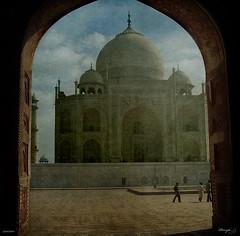 Taj Mahal. Testimoni d'un gran amor / Taj Mahal. Testimony of a great love (Duarja) Tags: tajmahal cruzadas idream ltytrx5 ltytr2 ltytr1 ltytr3 ltytr4 absolutegoldenmasterpiece magicunicornverybest magicunicornmasterpiece cruzadasiii cruzadas2 cruzadasv cruzadasiv