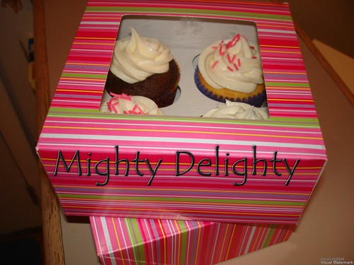 Hurricane Irene Chocolate vanilla cupcake care package