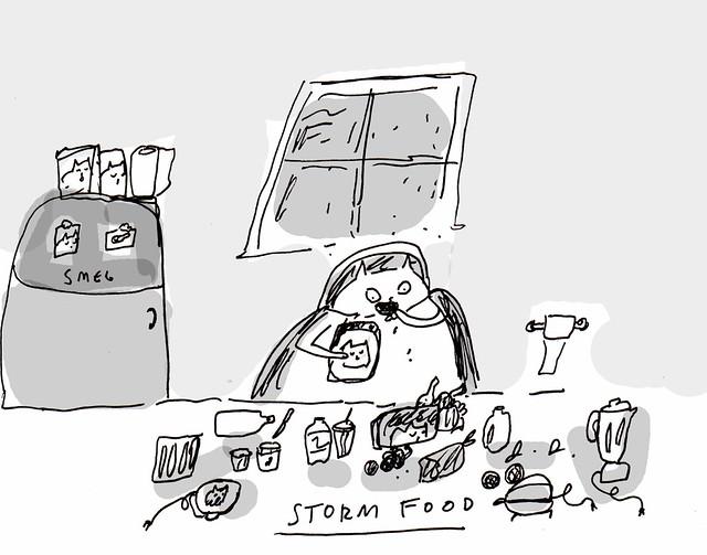 storm food