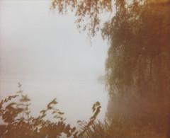 Grenadier Fog 4 (islets) Tags: toronto film fog polaroid highpark spectra softone