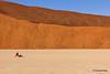 Minimalism (hannes.steyn) Tags: africa trees friends people nature canon sand desert dunes getty pan sesriem namibia reserves sossusvlei namib deadvlei camelthorn namibdesert 550d antonvanbreda hannessteyn canonefs18200mmf3556is canon550d eosrebelt2i namibnaukliftpark gettyimagesmeandafrica1