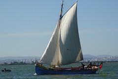 Canoas do Tejo (fotos_ilca) Tags: portugal boats barcos riotejo flickraward fotosilca canoasdotejo