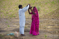 Water is Life II - Series (Iqbal.Khatri) Tags: life travel pakistan woman man water rain rural pond couple culture lifestyle crop fields agriculture utensil sindh filling thar rurallife iqbal khatri tharparkar parkar tharri