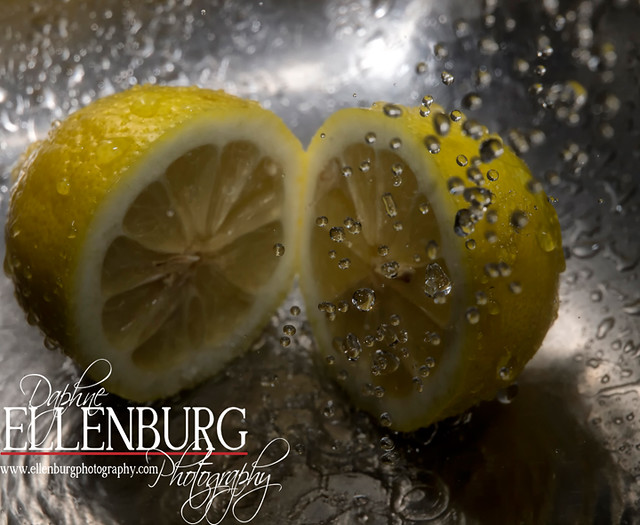 FB 11-09-09 Lemon-01a