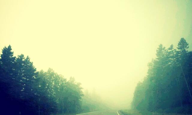 Grand Marais Fog