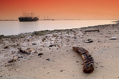 Doha Sunset (A.alFoudry) Tags: world wood sunset sea orange beach canon boats eos boat slow gulf mark tide low full arab shore frame shutter 5d stick kuwait usm arabian fullframe canonef2470mmf28lusm ef kuwaiti doha arabiangulf q8 abdullah mark2 2470mm    f28l kuw q80 q8city xnuzha alfoudry abdullahalfoudry arabgulf foudryphotocom oshairej mark   5d   canoneos5d   mk   canoneos5dmark  