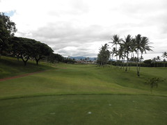 WAIKELE COUNTRY CLUB 096