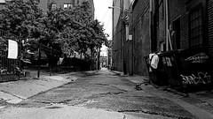(davidokros) Tags: street white black concrete empty bin dirt feeling