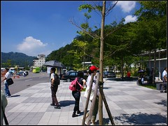DSC07158 Photo