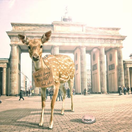 [フリー画像] グラフィックス, フォトアート, 鹿・シカ, ドイツ, 201109281700