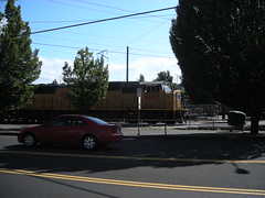 A container freight shoots by me next to Division Street this afternoon
