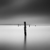 Off Balance (~ superboo ~ [busy busy]) Tags: sanfrancisco longexposure morning water fog bay pier sticks still calm pilings angelisland relaxed sausalito marinelayer