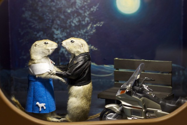 Love Ain't Just For Muskrats