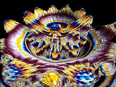 Crocus Two (fantartsy JJ *2013 year of LOVE!*) Tags: abstract art photoshop circles bubbles fractal photoart kaleidoscopes supershot anawesomeshot originaldigitalart thesuperbmasterpiece fractalsmademyway