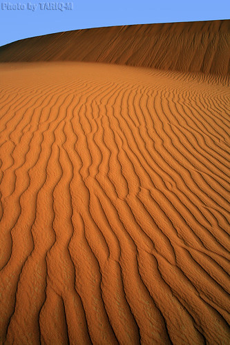 Sand Waves by TARIQ-M