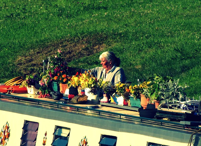 Narrow Boat Gardening