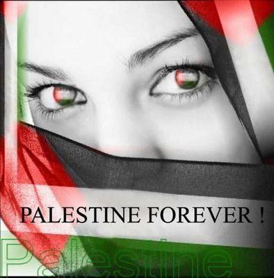 normal_palestine~0