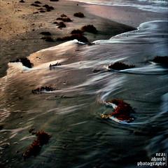(noprayer4dying) Tags: ocean travel sea tourism beach water saint st coral rock square flow island photography bay boat sand stream tour martin natural h2o foam bangle reef martins ahmed bangladesh teknaf canoneos350ddigital neaz neazahmedphotography porjotan
