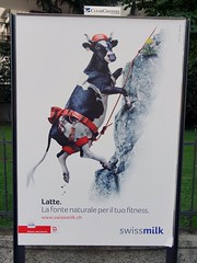 Latte. La fonte naturale per il tuo fitness. (Peter Milecki (Gonzo Press International)) Tags: outdoor propaganda pr agenda clearchannel milch milchprodukte swissmilk