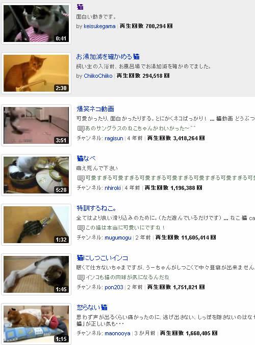 YOUTUBE 猫検索