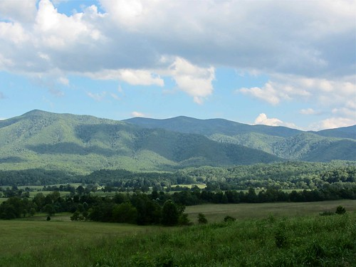 The Smokies @ Cades Cove II