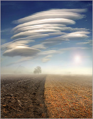 The separation (Jean-Michel Priaux) Tags: sky cloud mist tree geometric field fog photoshop landscape nikon niceshot graphic geometry surreal ufo line surrealist unreal nuage paysage plain lenticular brouillard brume ligne ovni lowland plaine wow1 d90 diebolsheim geomtrie bindernheim mygearandme