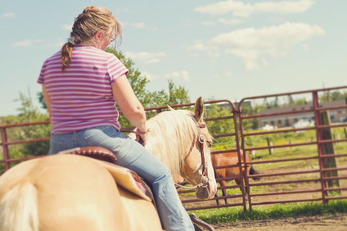 Halifax NS Wedding Portrait Horse Equine photography - Splash & Donna - Nicole Payzant -  (14 of 26)