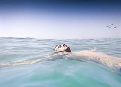 (Luis Hernandez - D2k6.es) Tags: barcelona boy sea summer portrait sky sun luz sol water canon mar agua retrato descansar pajaros cielo desenfoque vacaciones calor s90 badalona montgat enfoque