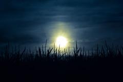 Moonlight (thomas.leuther) Tags: samsung moonlight canonfd135mmf28 nx10