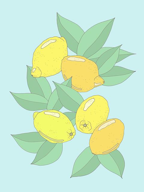 lemons305