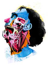 Anatomy 03 (Quain)