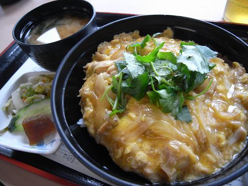 「大和肉鶏親子丼」が美味!『奈良県庁食堂』@奈良市
