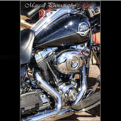 Harley Davidson - HDR (Margall photography) Tags: sun bike reflections stars photography harley marco motor davidson hdr galletto margall