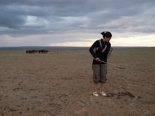 Desierto del Gobi 59