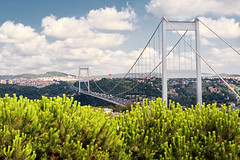 Istanbul (E.L.A) Tags: bridge sky cloud plant horizontal architecture turkey outdoors photography day nopeople istanbul suspensionbridge connection traveldestinations colorimage builtstructure august2011 february2012 gettyimagesmiddleeast 138328208