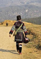 51_LAO76960076 (TC Yuen) Tags: vietnam sapa hmong terracefarming locai