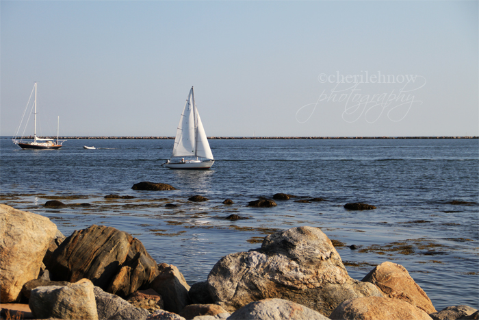 IMG_9736_beach.jpg