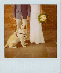 ♥♥ PolaWedding ♥♥ (Ilaria ♠) Tags: wedding polaroid 600film