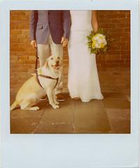 PolaWedding  (Ilaria ) Tags: wedding polaroid 600film