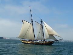Spirit of Dana Point (Michael R Perry) Tags: sandiego tallship woodenship festivalofsail spiritofdanapoint gafftopsailschooner