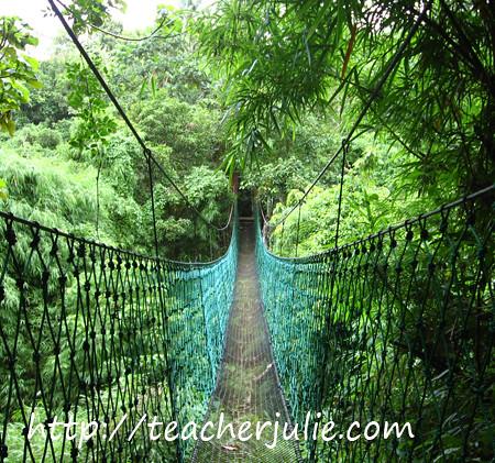 Kampo Trexo Hanging Bridge